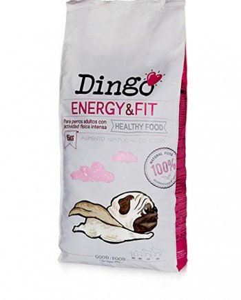 Dingo Energy Fit