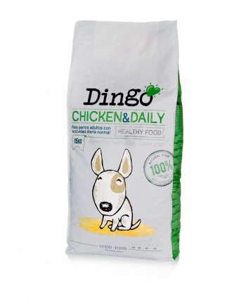 dingo-adult-daily