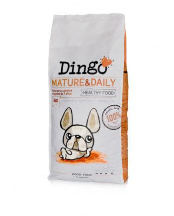 dingo-mature-daily
