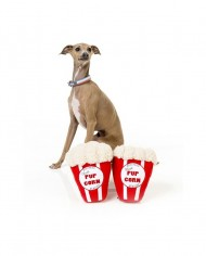 Popcorn FuzzYard
