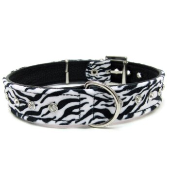 Collar Zebra Look