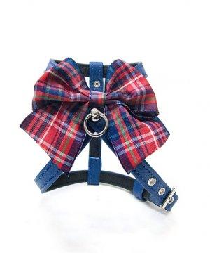 Arnés Blue Escocia