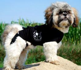 Camiseta Postoperatoria para Perros