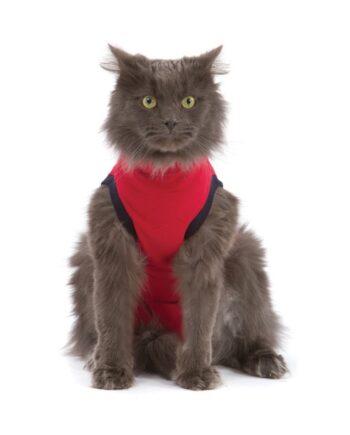 Camiseta postoperatoria para gatos Medical Pet