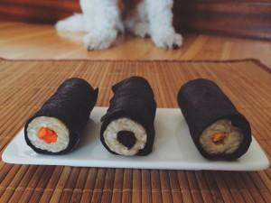 Sushi para perros