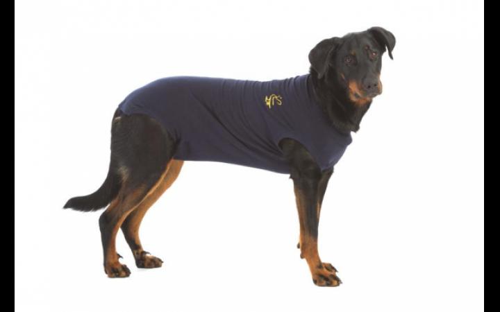 Camiseta Postoperatoria para perros Medical Pet