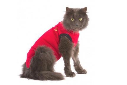 Camiseta post operatoria para gatos