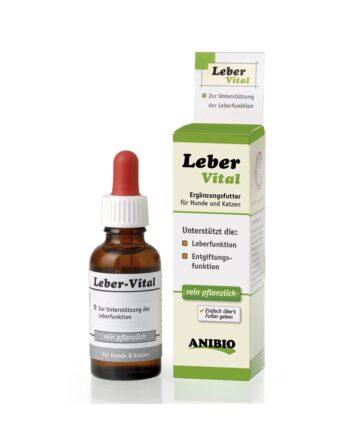 Hígado Vital - Complemento hepático para perros y gatos