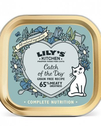 lilys-kitchen-salmon-gatos