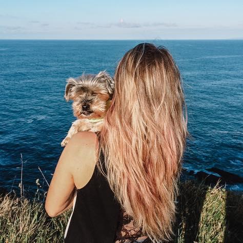 playas_asturias_perros