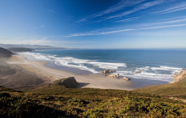 playas_perros_asturias