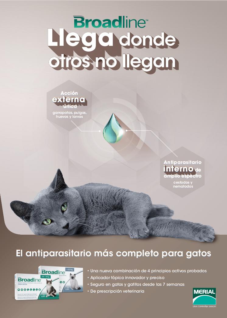 Broadline, las pipetas antiparasitarias para gatos más completas