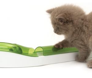 juguete_interactivo_gatos