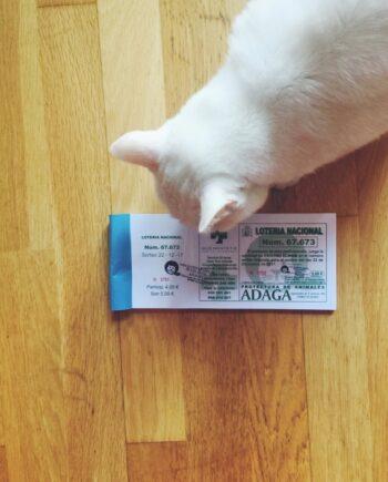 Lotería de Navidad Solidaria a favor de ADAGA