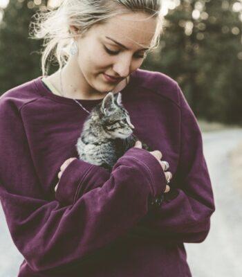 Piensos Holísticos para Gatos