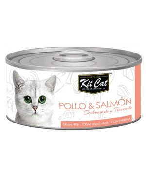 kit-cat-latas-alta-calidad-gatos