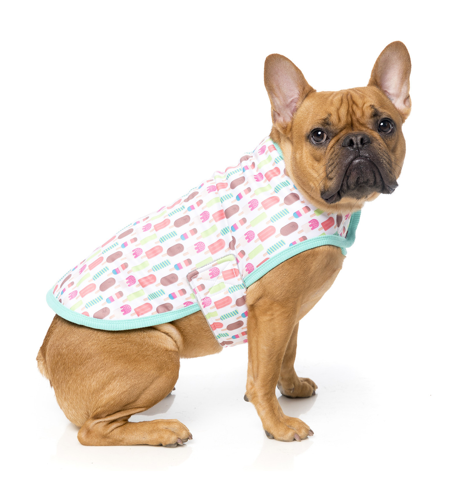 fuzzyard-ropa-perros