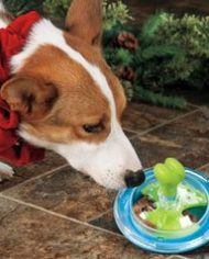 juguete-interactivo-perros