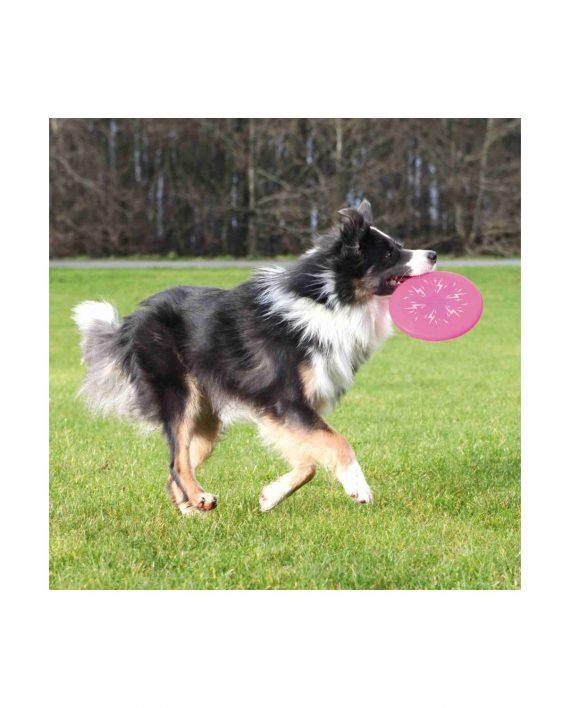 Frisbee con luz