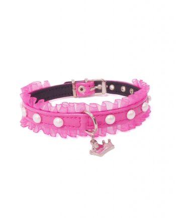collares-diseño-perros