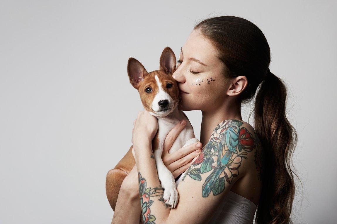 ¿El perro es carnívoro u omnívoro?