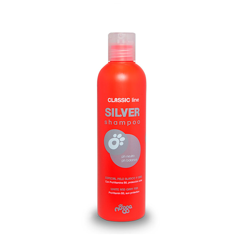champu-silver-nogga