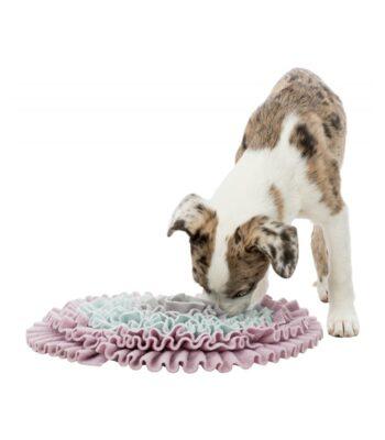 Alfombra-olfativa-perros