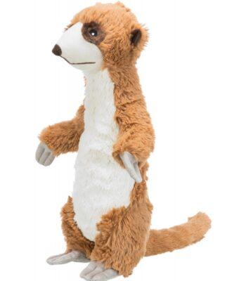 Timón, el suricato