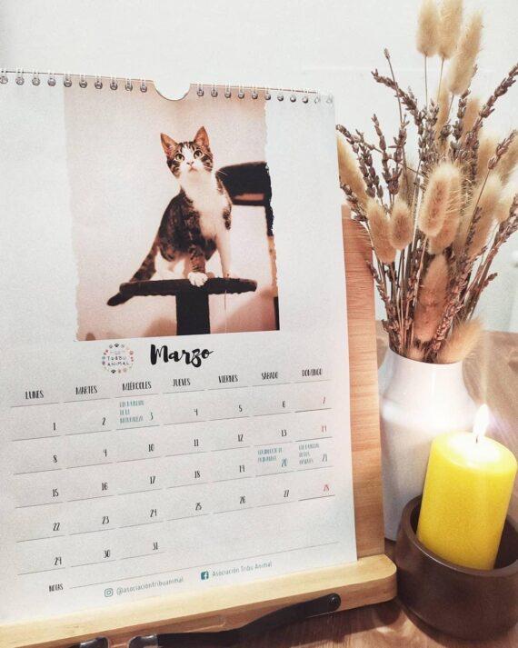 calendario-tribu-animal