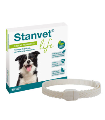 Collar Stanvet Life Natural