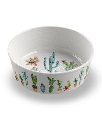 Comedero Cactus