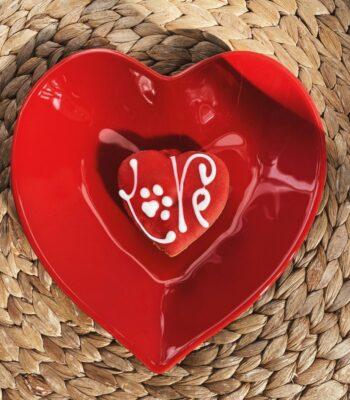 Corazón Style