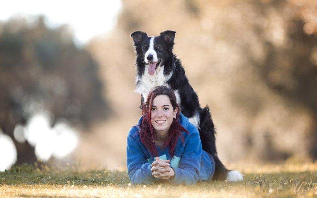 El Juego con los motivadores para perros